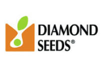 diamondseeds